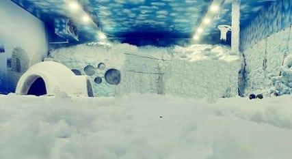 Snow Park - Axis Mall (Kolkata)